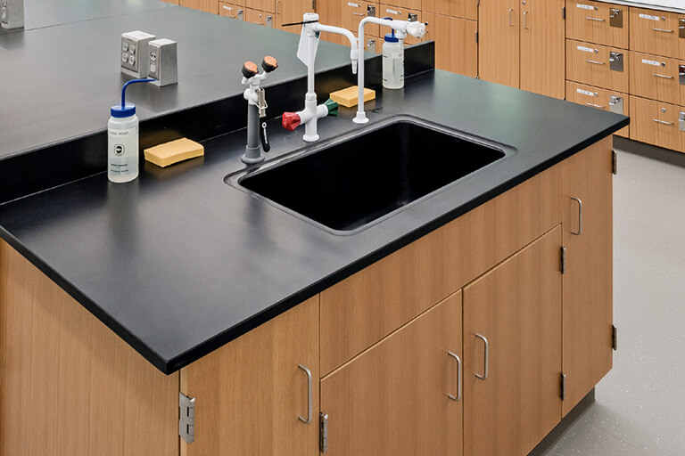 Sinks, Fixtures, and Accessories for Commercial Labs