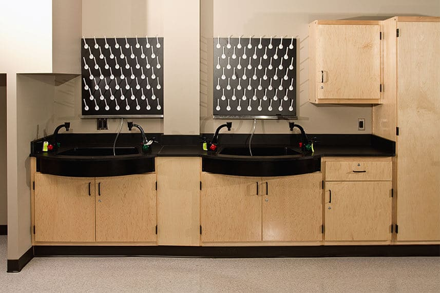 Sink + Fixtures for an Educational Lab