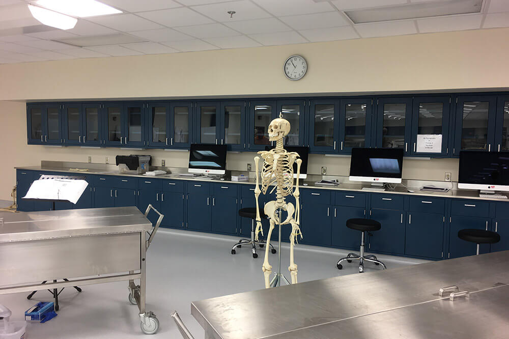 Longo Labs products in an anatomy/physics lab