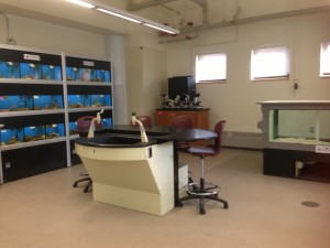 Norfolk County Aquaculture Lab