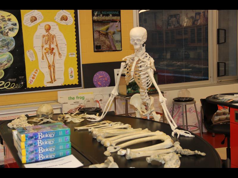 Plainfield HS_Biology Lab (2)