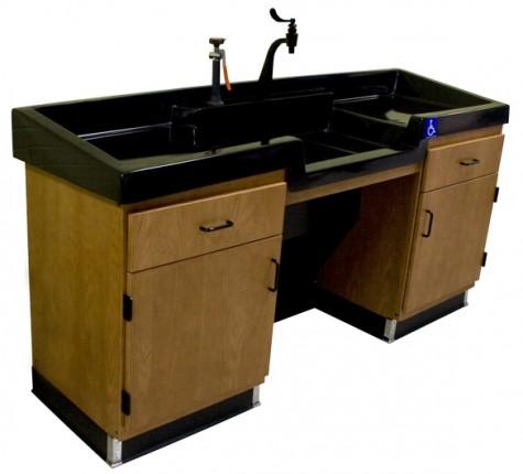 Rinseaway Sink