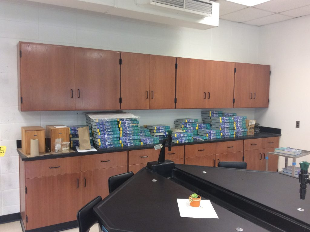 Teacher Demonstration Desks