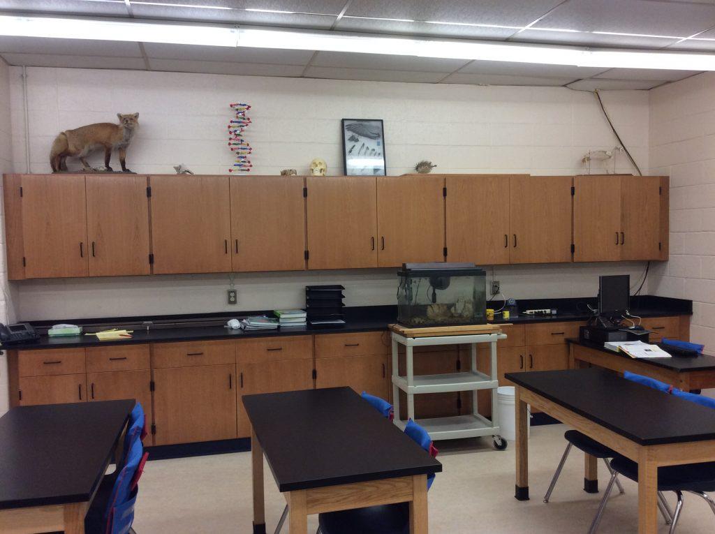 Wood Laboratory Casework